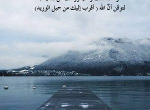 Photo of حالات واتس اب حكم ومواعظ عن الحكماء