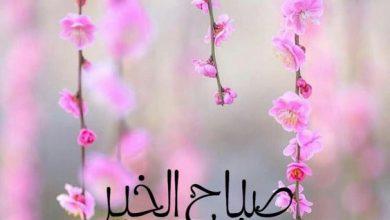 حالات واتس عن صباح الخير حبيبي