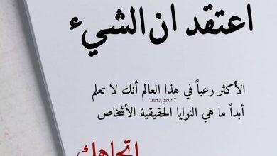 Photo of حالات واتس اب حكم وامثال قصيرة مكتوبة