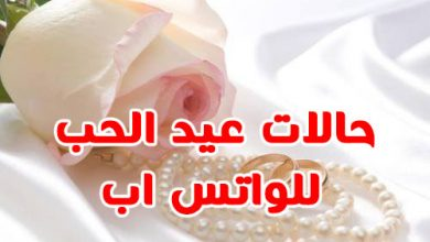 Photo of جديد حالات واتس اب ومسجات بمناسبة عيد الحب