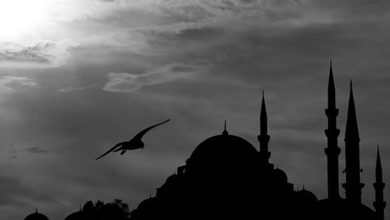 حالات واتس اب عن شهر رمضان